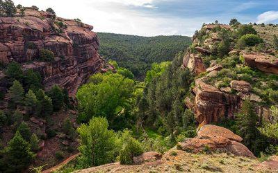 SARGA y el consejero Olona dejan la Sierra de Albarracín a merced de los incendios forestales