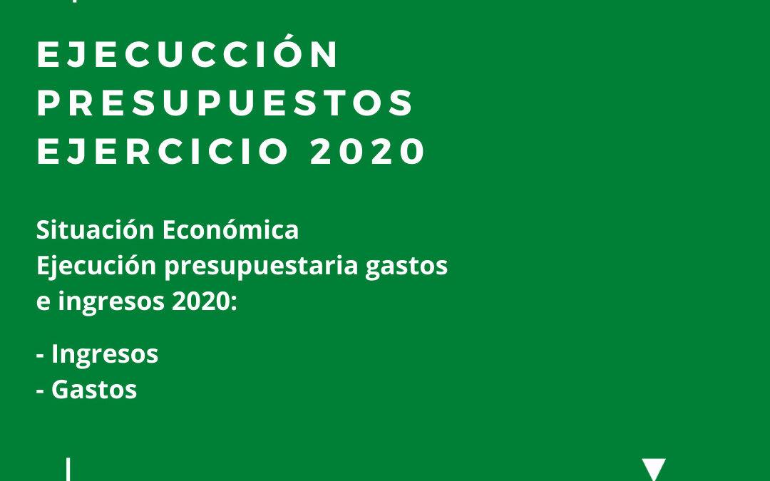 Presentación de la memoria económica del año 2020